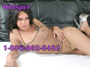 no taboo phone sex tranny